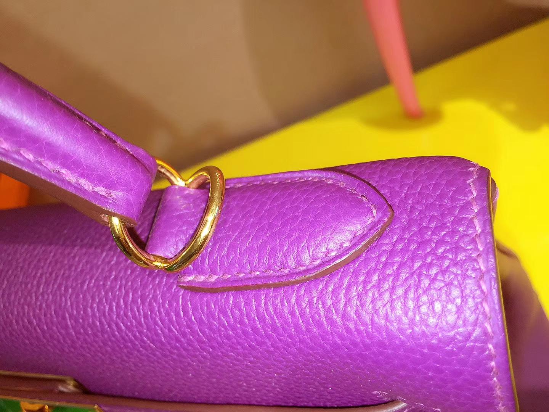 Hermès(爱马仕)Kelly 25CM 金扣  海葵紫 Togo